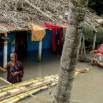 প্রবল বর্ষায় ফুঁসছে নদী, বাংলাদেশে জলবন্দি হাজার হাজার মানুষ