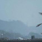 আমফানের পর ফের বঙ্গোপসাগরে শক্তিশালী নিম্নচাপ