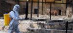 দুধের স্বাদ ঘোলে মেটাতে রাজ্যে শুরু হল চিড়িয়াখানার ফেসবুক লাইভ
