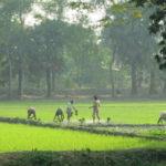 নিম্নচাপের জেরে ভারী বৃষ্টির পূর্বাভাস দক্ষিণবঙ্গে, নামবে তাপমাত্রা