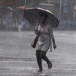 পঞ্চমীর দিনেই কলকাতা-সহ দক্ষিণবঙ্গে ধেয়ে আসছে বৃষ্টি