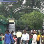 আলিপুর চিড়িয়াখানা থেকে চুরি গেল বিলুপ্তপ্রায় পাখি