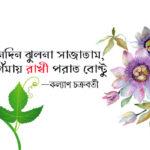 তিনদিন ঝুলনা সাজাতাম, পূর্ণিমায় রাখী পরাত বোন্টু